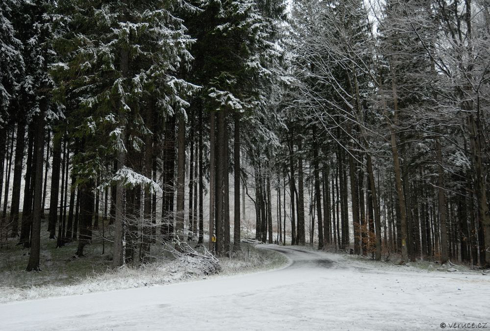 Jeseníky - zima