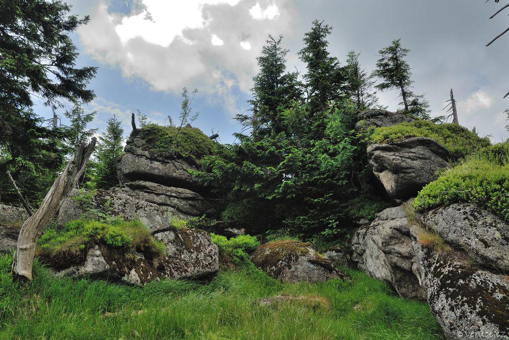 Jizerské hory - Holubník