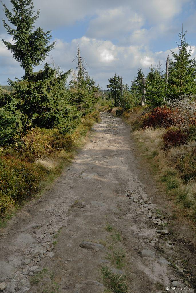 Cesta ze Smrku na Stóg Izerski